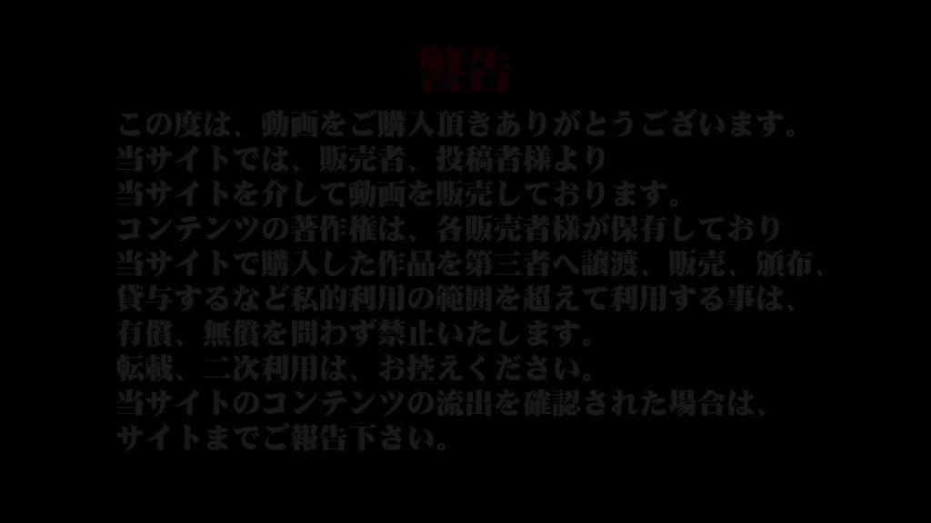 異業種交流会!!キャビンアテンダント編vol.45 便器 | パンストレディギャル  31連発